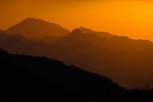 Sunset in Qinling Mountains, Shaanxi Province, China, April.  -  Jed Weingarten / Wild Wonders of China