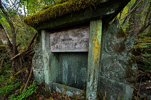 Taoist shrine in the woods, Tangjiahe Nature Reserve, Qingchuan County, Sichuan Province, China. April. - Jed Weingarten / Wild Wonders of China