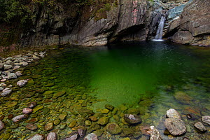 Small waterfall plunges into a clear pool, Tangjiahe nature reserve, Sichuan province, China. April.  -  Jed Weingarten / Wild Wonders of China