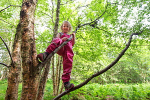 Girl climbing tree in woodland during forest kindergarten session. Aberdeen, Aberdeenshire, Scotland, UK. Editorial use only - SCOTLAND: The Big Picture