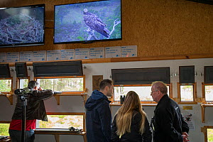 Visitors at Loch Garten Osprey Centre with live Osprey (Pandion haliaetus) footage on screens. Boat of Garten, Cairngorms National Park, Scotland, UK. - SCOTLAND: The Big Picture