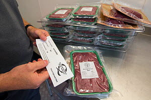 Wild venison producer, Forest to Fork, demonstrating Quality Assurance certification for culled deer. Meat products in background. Culbokie, Ross and Cromarty, Scotland, UK.  -  SCOTLAND: The Big Picture
