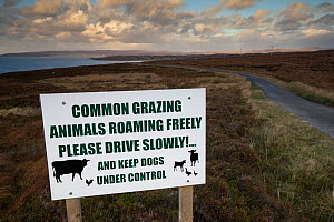 Information Sign in Wester Ross indicating livestock grazing on moorland, Gairloch, Highlands, Scotland, UK. - SCOTLAND: The Big Picture
