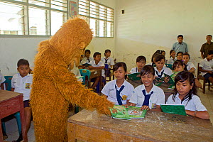 Sumatran Orangutan Society presentation at local school. North Sumatra, Indonesia.  -  Suzi Eszterhas