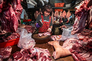 Woman at an early-morning 'wet market' or produce market, carves up pig meat for sale in Taipei, Taiwan, January 2019.  -  Jo-Anne McArthur / We Animals