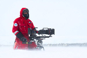 Camerman Lindsay McCrae with film camera in front of Emperor penguin (Aptenodytes forsteri) breeding colony,during winter storm, on location for BBC Dynasties Penguin programme. Atka Bay, Antarctica.... - Stefan Christmann