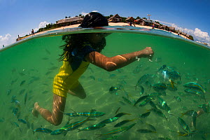Filipino girl feeding fish off Snake Island in Honda Bay, Palawan. - Duncan Murrell