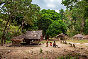 The Batak indigenous village in the forest, Sitio Kalakwasan in Cleopatra's Needle Critical Habitat, Palawan, the Philippines.  -  Duncan Murrell