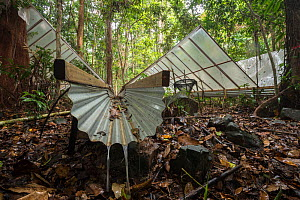 Water redirected through gutters at the Daintree Drought Experiment, where rainforest plants are grown under cover to see how they respond to drought. Daintree Rainforest Observatory, northern Queensl...  -  Jurgen Freund