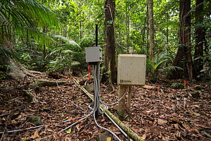 Scientific instruments to measure many elements related to rainforest treess including carbon dioxide exhaled, tree's water intake and flow and growth rate. Daintree rainforest observatory, Queens... - Jurgen Freund