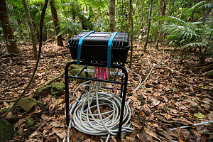 Scientific instruments to measure many elements related to rainforest treess including carbon dioxide exhaled, tree's water intake and flow, and growth rate.Daintree rainforest observatory, Queens... - Jurgen Freund