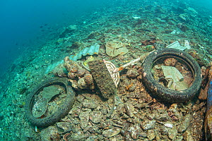 Rubbish covering the seabed, Maluku, Indonesia, November 2018.  -  Jurgen Freund