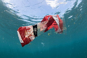 Discarded plastic food packaging floating in the sea, Sulawesi, Indonesia, November 2018  -  Juergen Freund