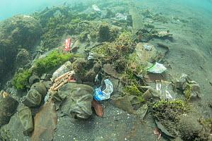Underwater plastic rubbish such as single use plastic bottles, cups, packaging, labels, waste and woven sacks polluting the seabed, Sulawesi, Indonesia. November 2018. - Jurgen Freund