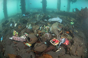 Underwater plastic rubbish such as single use plastic bottles, cups, packaging, labels, waste and woven sacks polluting a coral reef near a jetty, Sulawesi, Indonesia. November 2018. - Jurgen Freund
