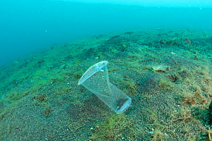 Discarded single use plastic water cup being carried by the current, resembling a jellyfish, Sulawesi, Indonesia. November 2018. - Jurgen Freund