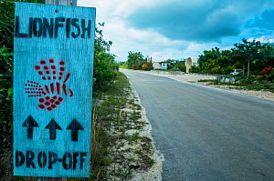 Sign for Lionfish drop off. Local fisherman are paid to catch invasive lionfish (Pterois volitans) in the Caribbean to help reduce their numbers and, in turn, help the reefs. Image made on Eleuthera,...  -  Shane Gross