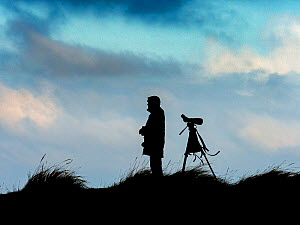 Silhouette of bird watcher watching sea birds from sand dunes, Titchwell, Norfolk, England, UK, January.  -  Ernie  Janes