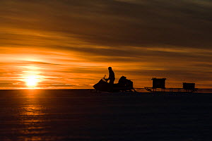 BBC cameraman riding skidoo across ice at sunset. Atka Bay, Antarctica. February 2017.  -  Stefan Christmann
