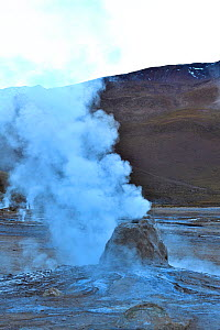 Geysers and fumaroles, El Tatio geyser field, 4320m above sea level, Andes Mountains, northern Chile. - Daniel  Heuclin