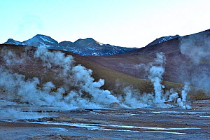 Landscape with active geysers and fumaroles. El Tatio geyser field, 4320m above sea level, Andes Mountains, northern Chile. - Daniel  Heuclin