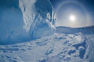 Landscape of Emperor penguin (Aptenodytes forsteri) habitat with sun halo, Atka Bay, Queen Maud Land, Antarctica. October. - Stefan Christmann