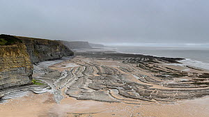 Faulted Jurassic age Liassic limestones (Blue Lias) exposed in the cliffs and on the foreshore. Southerndown, South Glamorgan Heritage Coast, Wales, UK. September - Graham Eaton