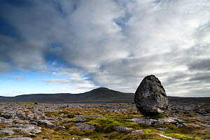 Glacial erratic of Silurian age sandstone, perched upon youger Carboniferous age limestones. The limestones form a limestone pavement with the hill Ingleborough in the background. Whernside, Yorkshire...  -  Graham Eaton