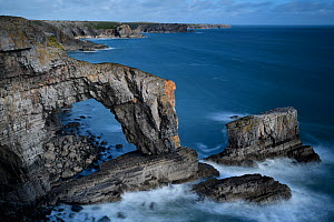 The Green Bridge of Wales, a natural rock arch comprising Carboniferous limestone, Castlemartin, Pembrokeshire, Wales. September 2017.  -  Graham Eaton