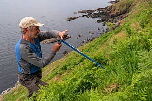 RSPB biologist John Tayton creating artificial Manx shearwater (Puffinus puffinus) nest sites, Garbh Eilean, Shiant Isles, Outer Hebrides, Scotland, UK. June 2018. - SCOTLAND: The Big Picture