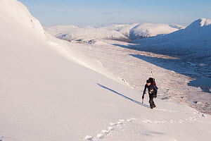 Winter hiker with ice axe climbing Beinn Fhada, Glen Affric, Kintail, Scotland, UK, February. - SCOTLAND: The Big Picture