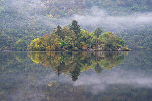 Forested island on Loch Lomond, Loch Lomond and the Trossachs National Park, Scotland, UK  -  SCOTLAND: The Big Picture