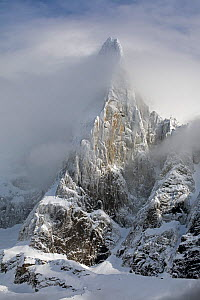 Aiguille du Dru emerging from the clouds in the afternoon, Chamonix area, Haute-Savoie, Mont Blanc area, France, February  -  David  Pattyn