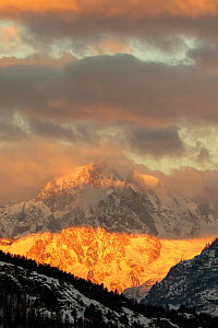 Mont Blanc seen from the Aosta Valley in the first morning light, Gran Paradiso national Park, Aosta Valley, Alps, Italy, December - David  Pattyn
