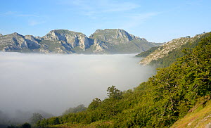 Sea of mist rising up the Valdediezma valley, Picos de Europa mountains, near Sotres, Asturias, Spain, August 2016. - Nick Upton