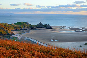 Overview of Three Cliffs Bay at dusk with Pennard Pill stream meandering across the beach to reach the sea at low tide, Penmaen, The Gower peninsula, Wales, UK, October 2018. - Nick Upton