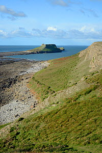 Overview of the Worm's head with the causeway that connects it to the mainland exposed at low tide, Rhossili, The Gower peninsula, Wales, UK, October 2018. - Nick Upton