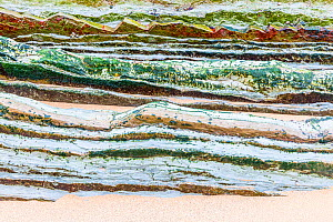 Layers of colourful flysch rock partly covered with sand and with common limpets (patella vulgata) on several places, as photographed on Barinatxebeach in the Blibao region in Northeast Spain. April 2...  -  Theo  Bosboom