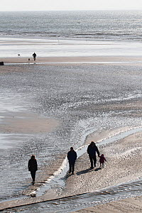 People and dogs walking on Amroth Beach, Pembrokeshire, UK, March 2017. - David  Woodfall