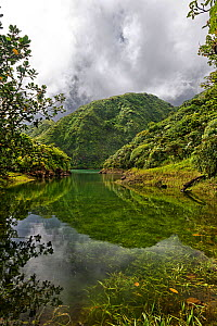 High altitude Boeri Lake in old volcano crater, Morne Trois Pitons National Park, Dominica, West Indies, Windward Islands.  -  Derek Galon
