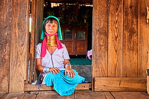 Kayan Lahwi woman with brass neck coils and traditional clothing sitting next to the front door of her home. In the background stands a buddhist altar. The Long Neck Kayan (also called Padaung in Burm...  -  Eric Baccega