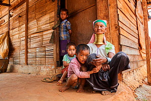 Kayan Lahwi woman with brass neck coils and traditional clothing looking after her grandchildren while the parents are working in the farm. The Long Neck Kayan (also called Padaung in Burmese) are a s...  -  Eric Baccega