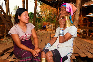 Generation gap - Kayan Lahwi woman with brass neck coils and traditional clothing chatting with her grand daughter, who is not wearing any coils and dressed in a modern style. The Long Neck Kayan (als...  -  Eric Baccega