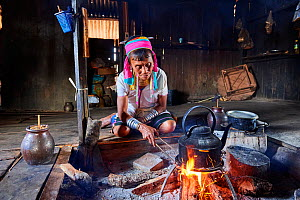Kayan Lahwi woman with brass neck coils and traditional clothing boiling water in her house to add to her favourite drink, a liquor distilled from fermented sorghum (left in the jar).The Long Neck Kay...  -  Eric Baccega