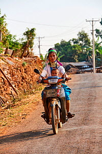 Kayan Lahwi woman with brass neck coils and traditional clothing riding a motorbike with her child. The Long Neck Kayan (also called Padaung in Burmese) are a sub-group of the Karen ethnic people from...  -  Eric Baccega