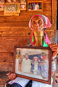 Elderly Kayan Lahwi woman (80 years old) with brass neck coils and traditional clothing sitting on her home deck and showing pictures of her when she was young. The black and white picture shows her a...  -  Eric Baccega