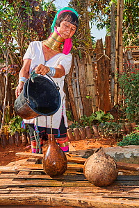 Kayan Lahwi woman with brass neck coils and traditional clothing filling a jar with water drawn from the well below. In the mountains of Pan Pet region, their sole clean water source comes from the ra...  -  Eric Baccega