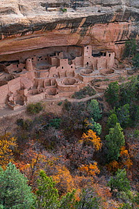 Cliff Palace, Mesa Verde National Park UNESCO World Heritage Site, Colorado, USA. October. - Juan  Carlos Munoz