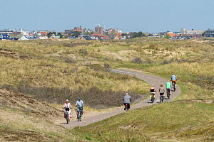 Sand dune ecosystem with cyclists on the coastal cycle path on the north coast of Holland, Netherlands, April 2018. - Terry  Whittaker
