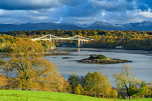 Menai Strait and Telford suspension bridge. Isle of Anglesey, Wales, October 2018.  -  Terry  Whittaker